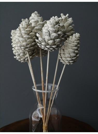 Kuru Çiçek Deposu Çam Kozalak Beyaz 6 Adet , Kuru Çiçek Beyaz